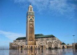 پارمیس مجری مستقیم تور مراکش