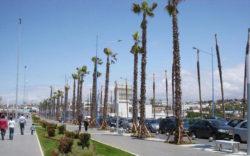 پارمیس-تور مراکش