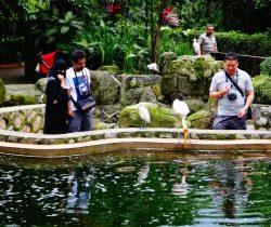 7199912-kuala_lumpur_lake_gardens_park_kuala_lumpur
